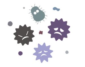ウイルスと細菌の増殖方法について